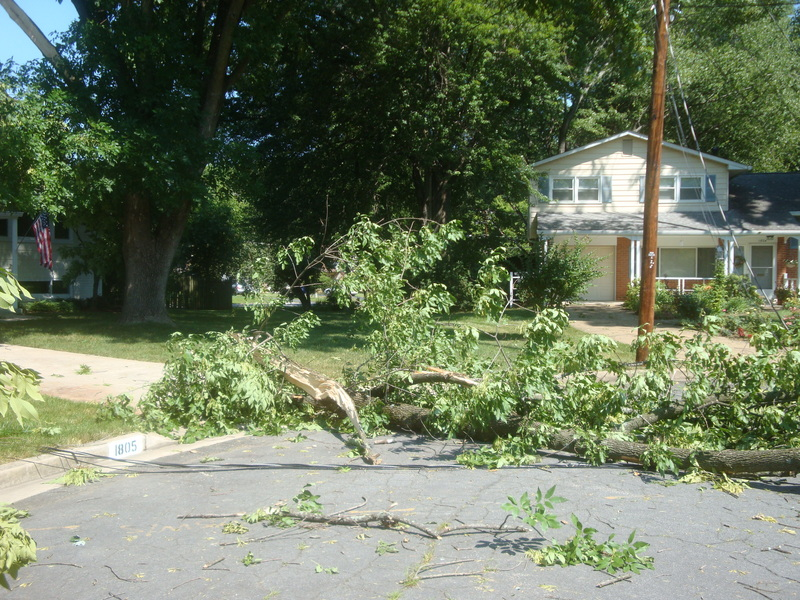 june 2012 and storm damage 073.JPG