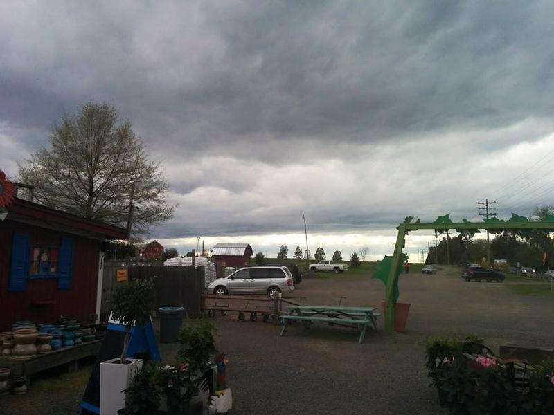 Cox farm 4.22.15.jpg