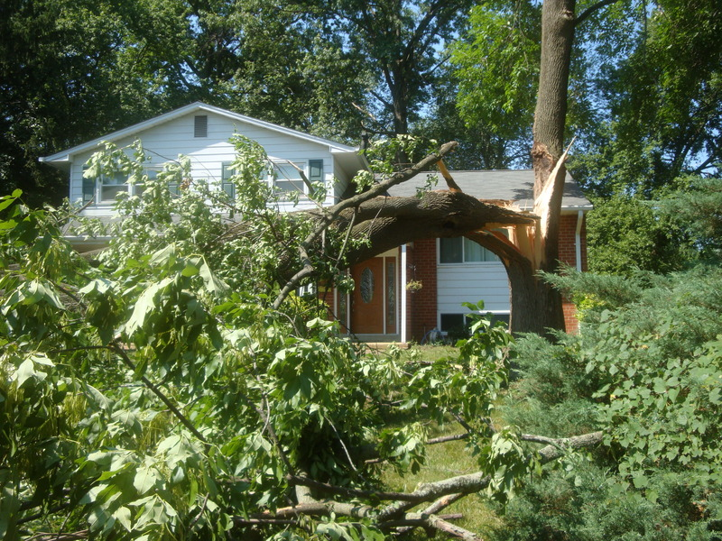 june 2012 and storm damage 075.JPG