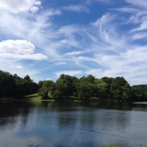 Lake Fairfax-Reston.jpg