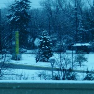 Annandale Campus Spring Snow 10.JPG