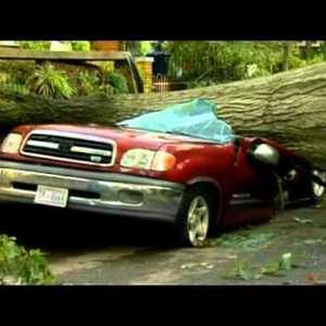 Storm 2012 Crushed Car.jpg
