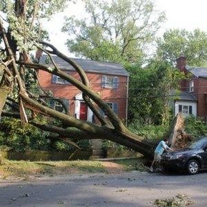 Storm 2012 House.jpg