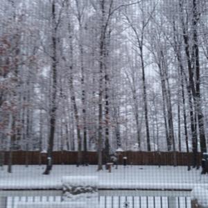 Spring week in NOVA - Spring break that is.jpg